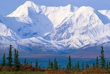 Alaska / The 49th state in the union will become #1 on your bucket list after you see what Carnival has lined up for you.  / by Carnival Cruise Lines
