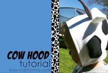 My Tutorials / Tutorials I have written for my website max-california.com! / by Adam West
