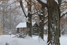 seasonal | feels like winter ... / by TypeArtist | Susan