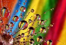 couleurs colors / by Elisabeth