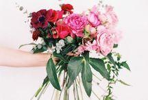 Wedding Shiz / by Allyson Paisley
