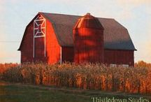 Barns! Art! Grist Mills! Bridges / Anything to do with old barns, particularly Red painted ones!!! Including Barn Art (old quilt designs painted on sides of old barns). Grist Mills included as well!! Also Covered Bridges!!!! / by Trish Robinson