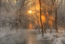 winter / by Anne James