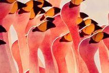 Birds / by Regina Campbell