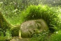 *Garden Geek* / by ~Shanda Fiessinger~