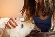 Pet Therapy and Home Remedies / by Heather Bradley