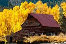 Beautiful Barns / by Teri Stillwell