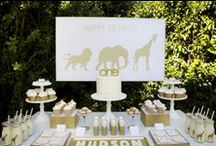 safari party / by Bloom Designs- Jenny Raulli