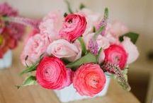 Flowers / by Bloom Designs- Jenny Raulli