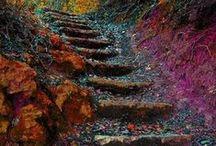 steps / ..stair design / by Tim AZ