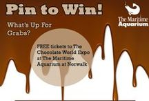 Chocolate World Expo Challenge / On Jan. 26, the Chocolate World Expo will take over The Maritime Aquarium. Buy chocolate and other sweets (and get some samples, of course!) from regional vendors while strolling through the Aquarium's galleries! Browse our chocolate board for some delicious inspiration.  The entry deadline is Jan. 22 at 4 p.m. Submit them here: http://ow.ly/sHf6Z / by The Maritime Aquarium at Norwalk