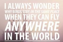words of wisdo / by Brianne