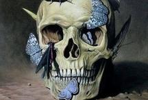 Skulls / by Sherri
