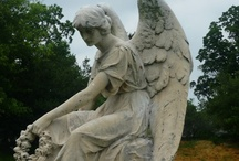 Hollywood Cemetery, Richmond, VA / by Sherri Thompson