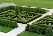 Civilized Gardens / by Susan Clickner