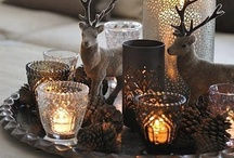 Winter Decorations / by Susan Clickner