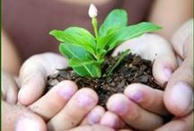Green living tips! / Your every day choices leave an imprint on the earth. There are many ways that you, as an individual, can step a little lighter on the Earth. We must ALL be part of the solution. The tips in this guide will help you create a healthier environment for you and your family, as well as for the Earth. / by Greenpeace Australia Pacific