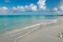Aruba / by Amber Boicourt