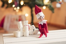 Elf on the Shelf Ideas / by Teresa Brown