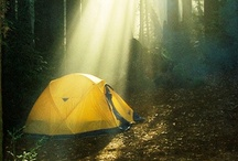 Camping and Gardening / by Amanda Key