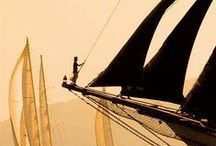 Dancing Sails  / by Sunshine Yacht & Boat Detailing