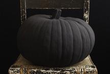 halloween & fall... / by raccoon studios