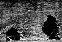 The Wall / by Luciana Nardini