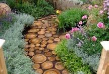 garden love/homesteading / by Mandy Rypkema