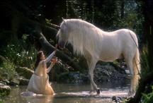 Unicorn and Pegasus / by Laura Watkins