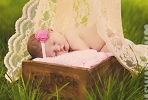 Photog:Babies / by Andrea Prescott