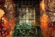 Not Just Windows / by Anita Rose