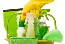 Cleaning Tips / by Annette Loiselle