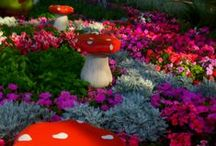 Gnome Garden Party / by L. J.