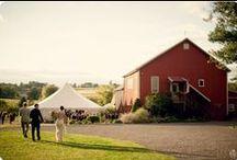 Wedding Bells / by Rebecca Crea