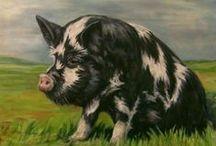 ANIMALS : Piggies / by Shelly Zeiden