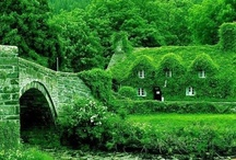 The Emerald Isle: Ireland / My heart yearns for Ireland. I would love to visit the Emerald Isle and perhaps I would stay.  / by ~Singing A New Song~