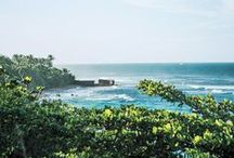 The Caribbean / by Condé Nast Traveler