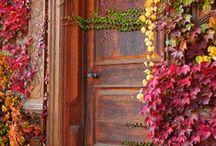 ,Doors, / door, bridges / by Margie Barr