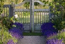 COUNTRY GATES AND GARDENS / beautiful gates n gardens / by Margie Barr