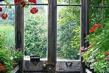 """""""CHARMED"""" COUNTRY DOOR'S! / old loved country doors / by Margie Barr"""