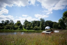YSP: In the open air at YSP / by Yorkshire Sculpture Park & YSP Shop