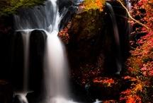 Waterfalls / by Amazing Adornments