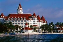 Grand Floridian Resort / by Fran Hogan