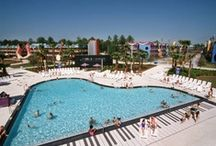 All Star Music Resort / by Fran Hogan