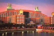 Swan and Dolphin Hotel / by Fran Hogan