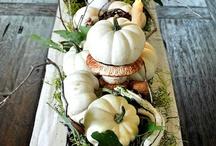 Thanksgiving/Fall / by Anna Schneider