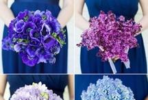 Blue and Purple Wedding / by Weddington Way
