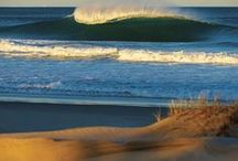 surf / by Wayne Macchion