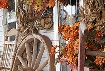 Fall / by Tamara Lewis