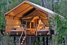Camping and Glamping / I prefer a motor home now!  Let the kids have the tent! / by Tamara Hopkins